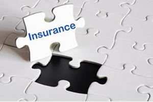 PT Liability Insurance